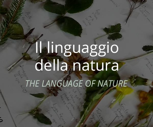 linguaggio-natura-min