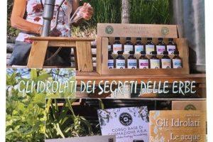 i-segreti-delle-erbe-aricolo-audonna-01-min